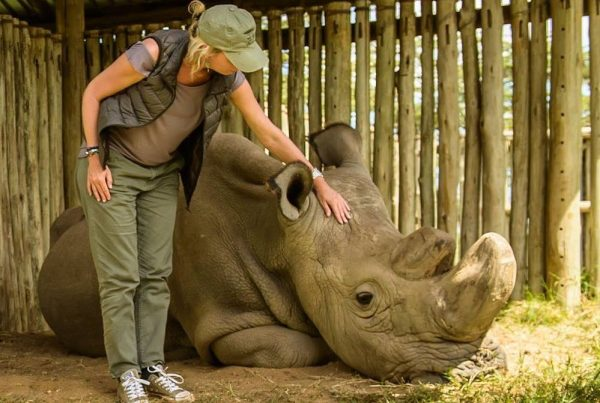 Margot Raggett - remembering wildlife