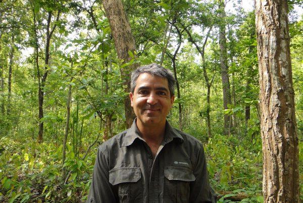 Serge Wich - primate professor